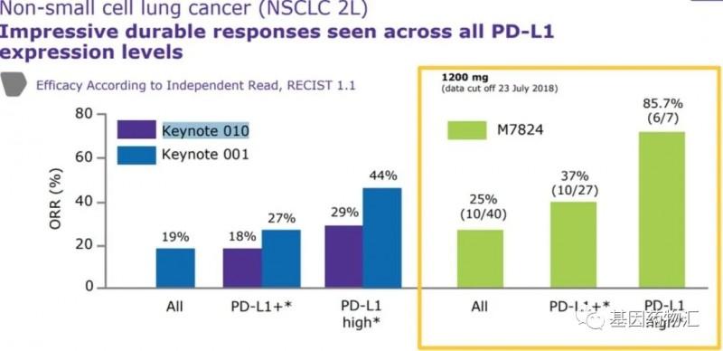 M7824治疗PD-1阳性患者的数据
