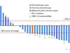 速递 FDA授予中国国产PD-1免疫药物特瑞普利单抗(Toripalimab)黑色素瘤快速通道资格