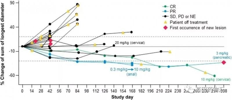 M7824不同癌种治疗数据
