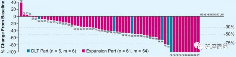 KEYNOTE-524研究结果