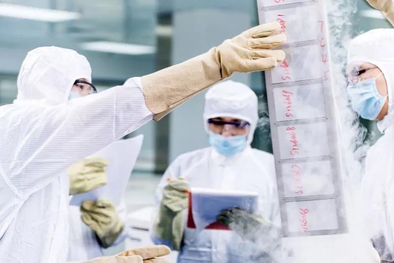 免疫细胞存储