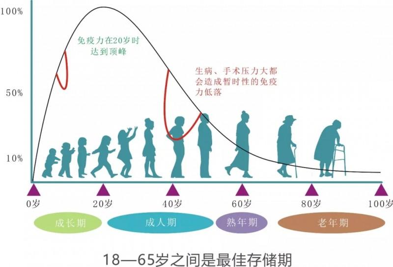 免疫细胞活性随着年龄增长而衰减的对比图
