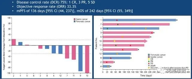 CAR-Claudin18.2 T 细胞治疗胃癌、胰腺癌的临床数据
