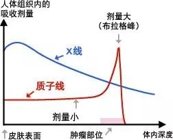 质子放射治疗和传统放疗放射剂量对比