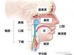 头颈部肿瘤有哪些,头颈癌放疗,头颈部肿瘤放射治疗