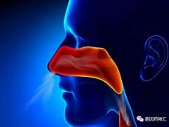 鼻咽癌临床试验,即将在美国上市的中国国产鼻咽癌免疫治疗(PD-1)新药派安普利单抗(Penpulimab、AK105)临床试验正在招募患者
