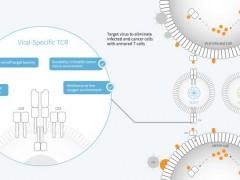 乙肝不能参加临床试验怎么办,专门针对乙肝肝癌患者的临床试验GPC3 CAR-T细胞疗法和TCR-T细胞疗法SCG101正在招募患者