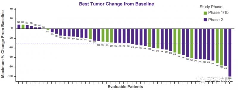 Adagrasib治疗非小细胞肺癌的数据