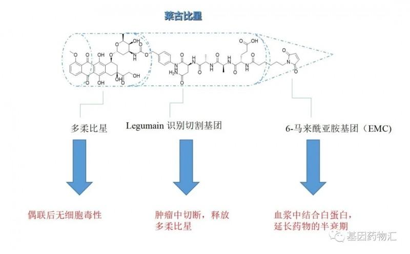 莱古比星分子结构
