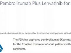 速递|肾细胞癌治疗,FDA批准派姆单抗+乐伐替尼的免疫联合靶向治疗晚期肾细胞癌的适应症