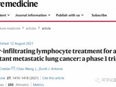 Nature重磅:T细胞疗法,自体TIL细胞疗法帮助两位晚期肺癌患者肿瘤完全消失