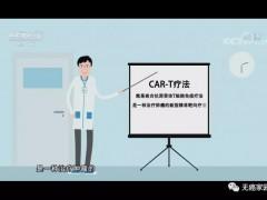 """CAR-T细胞免疫疗法价格高?进入医保有望将到""""白菜""""价,CAR-T细胞免疫治疗哪些患者能获益?"""