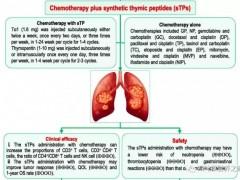 胸腺肽对肺癌患者有益吗,肺癌患者有必要打胸腺肽吗
