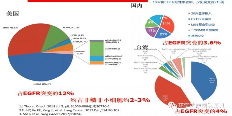 中美EGFR基因突变概率