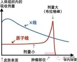 质子射线和X射线剂量对比