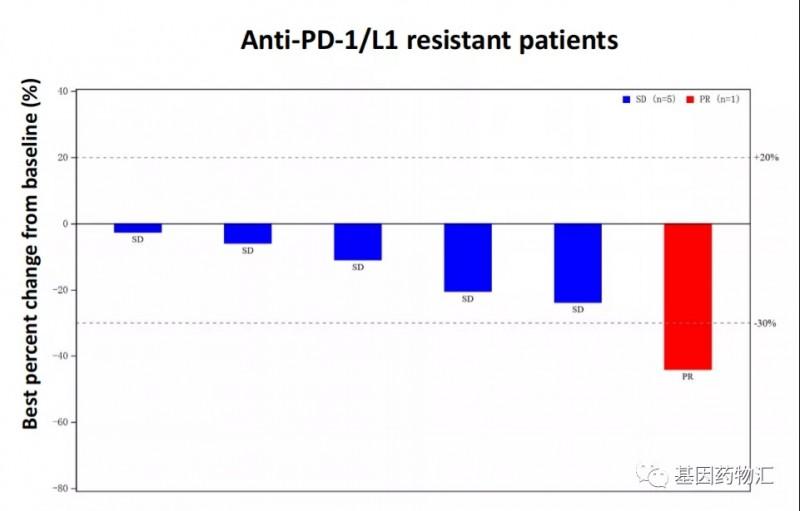 AK104治疗经治后肺癌患者的数据