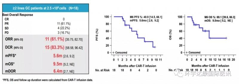 CAR-T治疗胃和胃食管交界癌的数据
