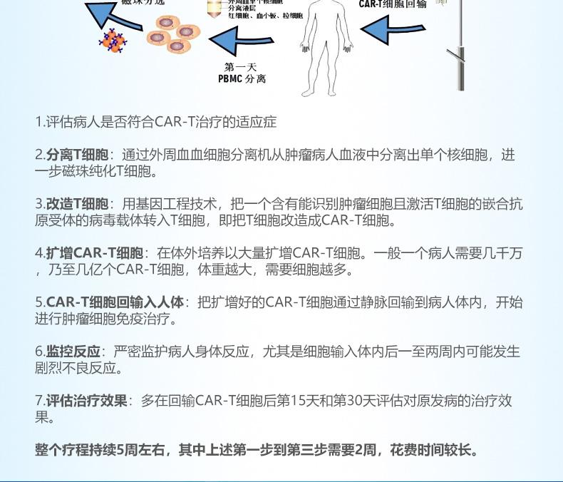 CAR-T治疗流程:分离:先要分离出病人的T细胞。 基因编辑:这是CAR-T的核心技术,也是每家公司技术上的核心竞争力(图B)。肿瘤细胞在和免疫细胞斗争的过程中,会隐藏自己的标记,避免被T细胞识别和摧毁。科学家通过基因编辑的手段,利用病毒传递遗传物质来重设T细胞,让T细胞的细胞膜有抗体的表达,能识别肿瘤特异性分子的蛋白,这样T细胞就像装上了「雷达眼睛」,让肿瘤细胞无处遁形。 扩增:如果把CAR-T比喻成一支军队,体外扩增就是招兵买马的过程。先利用磁珠活化T细胞,磁珠上包覆两种蛋白质,经特定信号蛋白的刺激后,就会进入扩增模式。5-10天后,每个CAR-T细胞会复制出100颗以上的CAR-T细胞。 回输:扩增好的CAR-T细胞通过注射进入人体。CAR-T细胞能辨识出肿瘤细胞表面的抗原,立即展开攻击,不再需要MHC或共同刺激配体的存在。 监控:常规的药物治疗都会产生不良反应或者副作用,活细胞更是如此,因此在注射后要密切关注病人的生命特征,随时处理突发状况。
