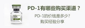 pd-1购买